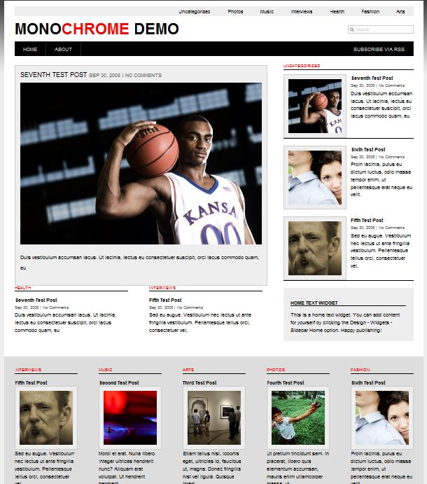 wordpress magazine themes mono chrome