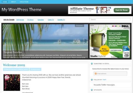 wordpress  twitter theme -3