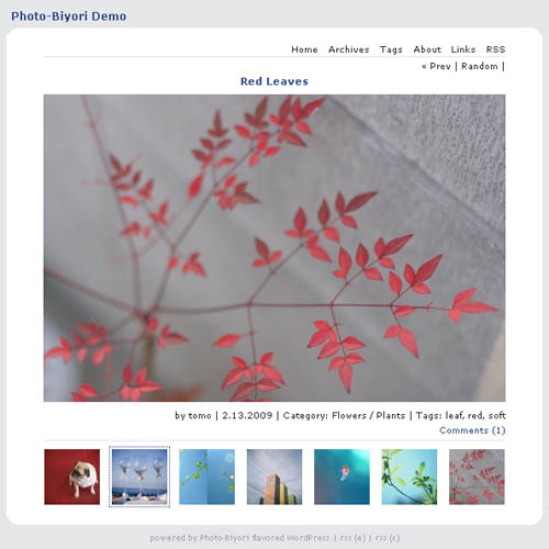 free wordpress photo theme