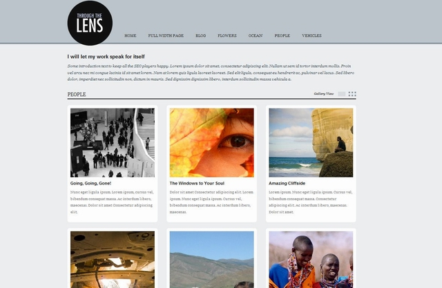 lens wordpress theme