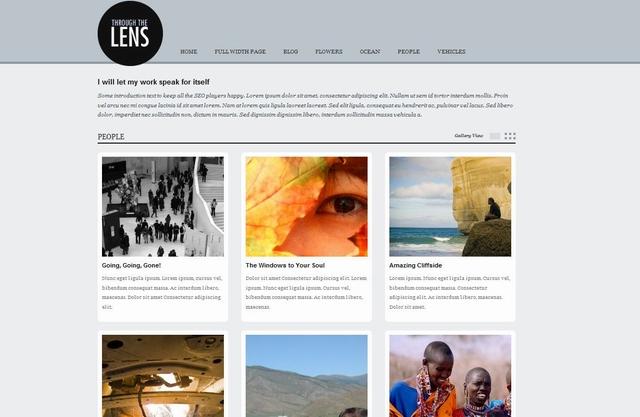 lens wordpress theme