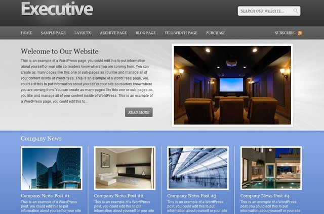 Executive WordPress Theme  for insurance websites