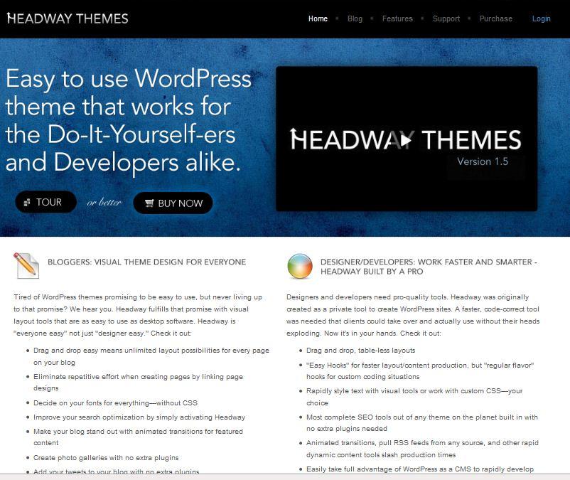 company cms wordpress theme