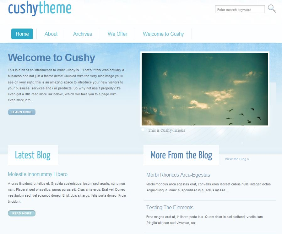 wordpress corporate cms theme