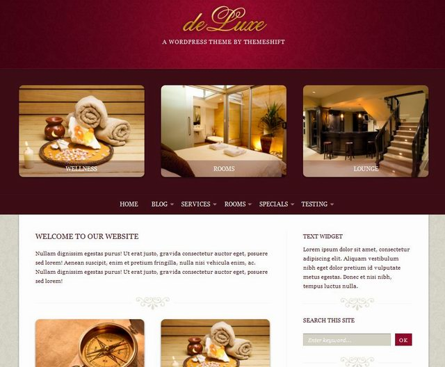cms wordpress life store theme deluxe