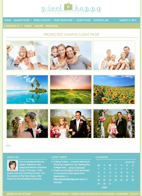 photo wordpress theme for photobloggers and family blogs