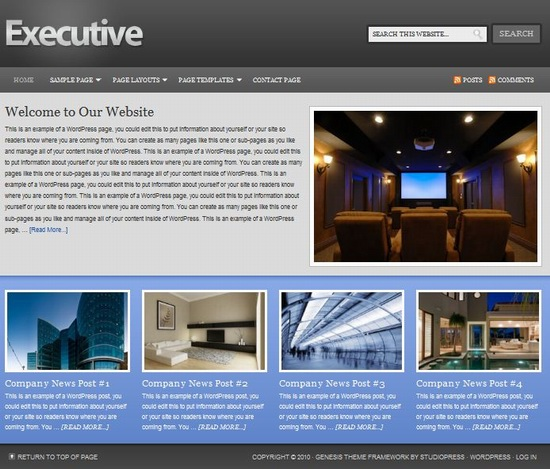 Corporate WordPress Template Executive picture