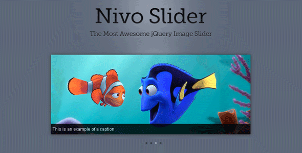 Nivo Slider