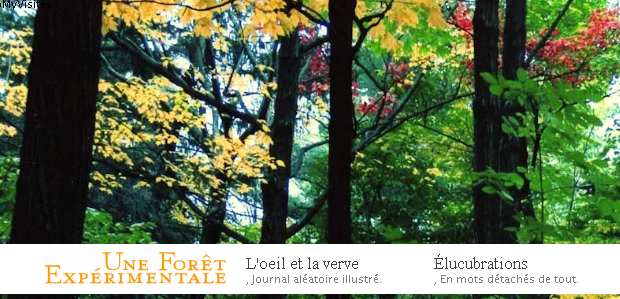 Une-foret-Experimentale