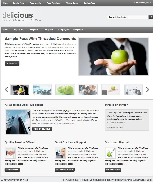 CMS Wordpress Themes for Small Business Websites - Dobeweb
