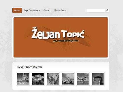 bizz card wordpress theme