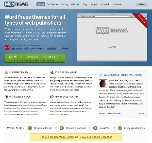 woothemes review