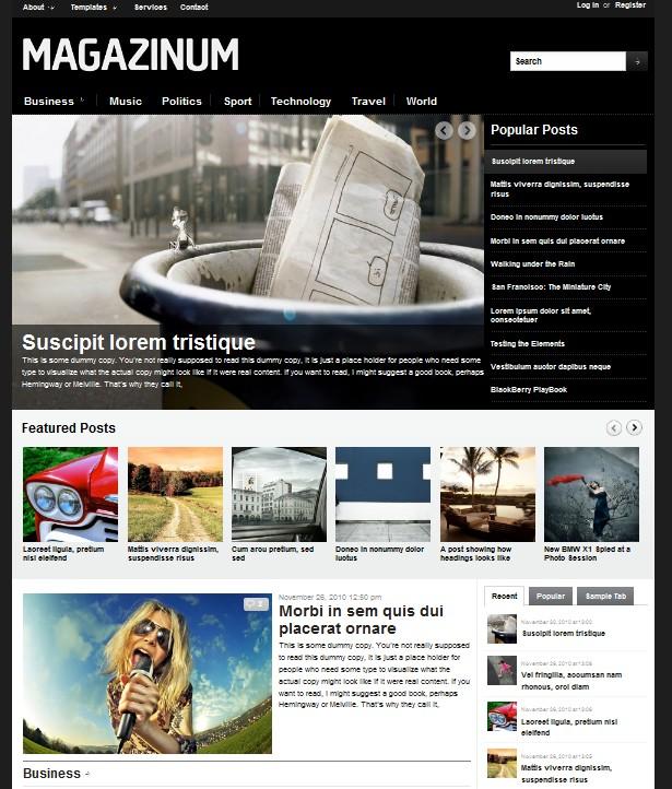 2 column magazine wordpress theme