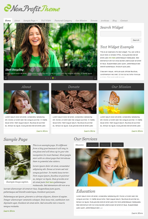 clean non profit wordpress cms themes