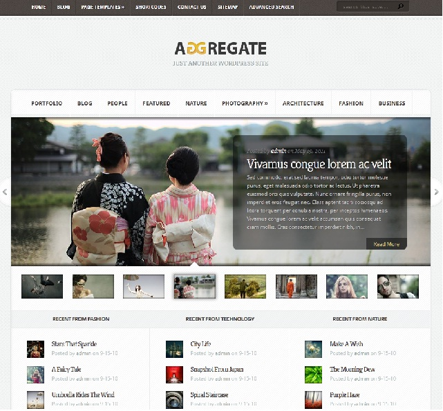 magazine wordpress theme 2011