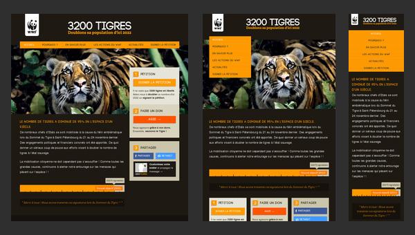 Responsive Web Design Websites