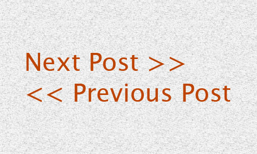 How to Display The Next Post/ Previous Post In The Same Category or Tag